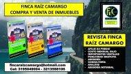 REVISTA FINCA RAIZ CAMARGO