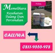 CALL/WA 0811-9662-996, Obat Herbal Nyeri Di Persendian FITSEA Di Depok