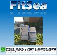 CALL/WA 0811-9555-978, FITSEA Obat Herbal Nyeri Sendi Di Kota Tangerang