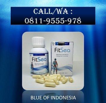 CALL/WA 0811-9555-978, FITSEA Obat Herbal Nyeri Otot Dan Sendi Di Kota Tangerang