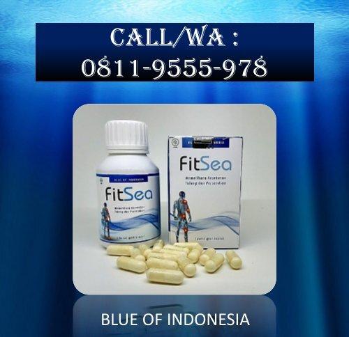 CALL/WA 0811-9662-996, FITSEA Obat Herbal Nyeri Otot Dan Sendi Di Kota Tangerang