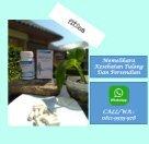 Agen Resmi Obat Herbal Fitsea - Page 2