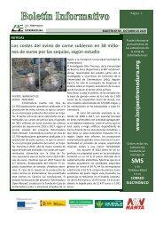 Boletín-nº69-octubre-2019