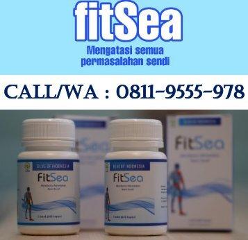 CALL/WA 0811-9555-978, Obat Herbal Nyeri Di Sendi Bahu FITSEA Jakarta Utara