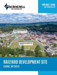 Elkins Railyard Marketing Flyer