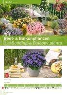 Bongartz Beet & Balkon _2020 - Seite 6