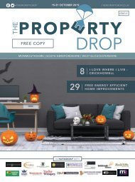 Property Drop Issue 61
