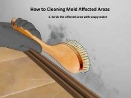 How to Remove Mold Affected Areas