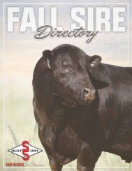 2019 FALL SIRE DIRECTORY