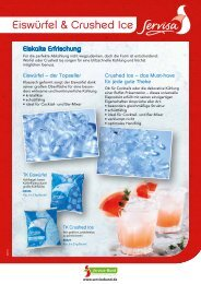 Salesblatt Servisa Eiswürfel