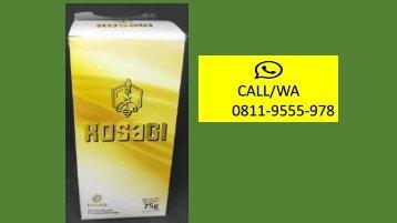 CALL/WA 0811-9555-978, Suplemen Meningkatkan Vitalitas Pria Secara Alami, KOSAGI Di Aceh
