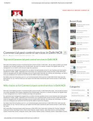 Commercial pest control services in Delhi NCR