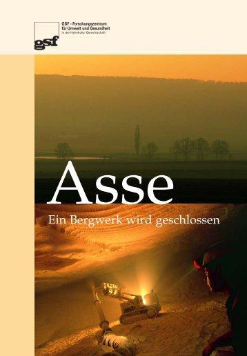 Asse - Ein Bergwerk wird geschlossen