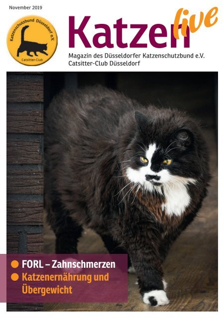 KatzenLive 2019