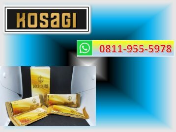 CALL/WA 0811-9555-978, Suplemen Ramuan Penambah Stamina, KOSAGI Dumai