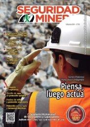 Seguridad Minera Edición 154