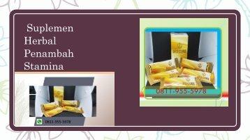CALL/WA 0811-9555-978, Suplemen Herbal Untuk Vitalitas Pria, KOSAGI Riau