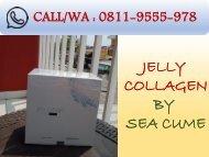 PROMO!!! CALL/WA 0811-9555-978, Jelly Collagen By Seacume Serum Kecantikan Karawang
