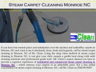 Steam Carpet Cleaning Monroe NC