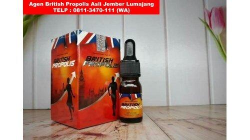 DISTRO !! TELP : 0811-3470-111 (WA), Agen British Propolis Asli Jember Lumajang