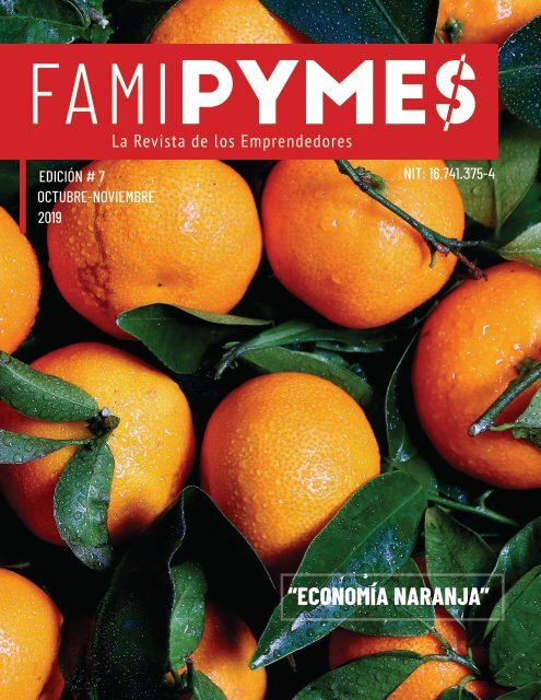 EDICION 7 REVISTA FAMIPYMMES OCTUBRE- NOVIEMBRE 2019