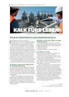 Stabilisator Ausgabe 2020 - Seite 5