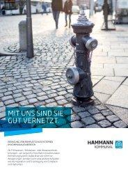 Hammann_Kommunal_Prospekt