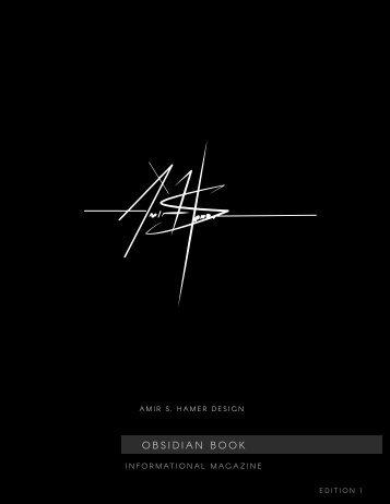 Amir S Hamer Design Service Offerings