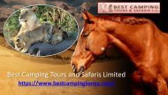 Best Camping Tours and Safaris