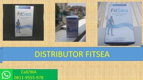 JUAL FITSEA di JAKARTA!!! CALL/WA 0811-9555-978, Obat Herbal Nyeri Persendian Kaki