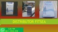 PDF FITSEA 03