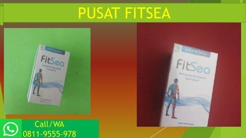 PROMO FITSEA di JAKARTA!!! CALL/WA 0811-9555-978, Obat Herbal Nyeri Persendian