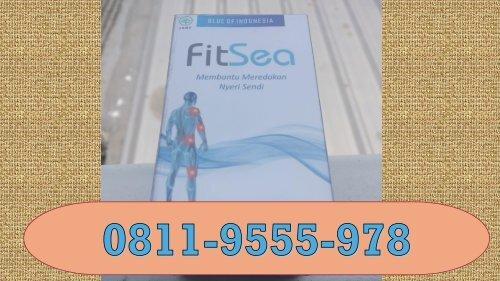 FITSEA Palembang, CALL/WA 0811-9555-978! Obat Herbal Nyeri Persendian