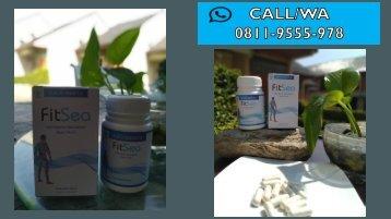 FITSEA Obat Herbal Nyeri Sendi diSamarinda, CALL/WA 0811-9662-996, Nyeri Pada  Persendian Tulang