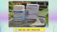 FITSEA Obat Herbal Nyeri Sendi di Semarang, CALL/WA 0811-9662-996, Nyeri Pada  Sendi Ekor