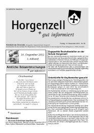 Ausgabe vom 14. Dezember 2012 - Horgenzell