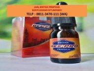 PUSAT !! TELP : 0811-3470-111 (WA), Jual British Propolis Banyuwangi Situbondo