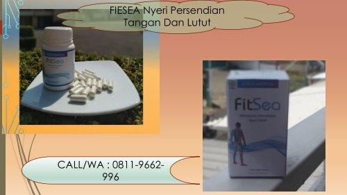 PROMO FITSEA di Yogyakarta!!! CALL/WA 0811-9662-996, Obat Herbal Nyeri Sendi Dan Demam