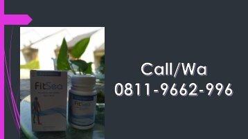 FITSEA Obat Herbal Nyeri Sendi di Kota Padang, CALL/WA 0811-9662-996, Nyeri Pada  Sendi