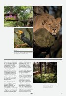 Chester & Cheshire: Ultimate Guide - Winter/Spring Edition - Page 7