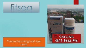 JUAL FITSEA di Balikpapan!!! CALL/WA 0811–9662–996, Obat Herbal Nyeri Persendian Paha