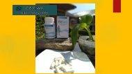FITSEA TERBUKTI!!!  CALL/WA 0811–9662–996, Obat Herbal Nyeri di Sendi Tangan di Pontianak
