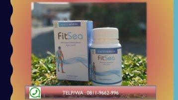 JUAL FITSEA di Solo!!! CALL/WA 0811-9662-996, Obat Herbal Nyeri Sendi Di Jari Tangan