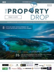 Property Drop Issue 62