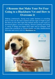 4 Reasons that Make Your Pet Fear Going to a Blackburn Vet and How to Overcome it