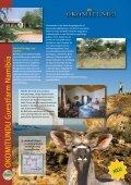 TraumReisen für Jäger und Angler Traum ... - Reisebüro Höfges - Seite 2