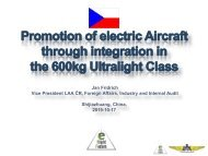 Jan Fridrich, promotion-of-electric-aircraft-through-600 kg ultralight class