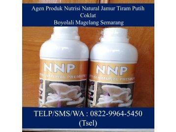 PILIHAN TERBAIK! TELP/SMS/WA : 0822-9964-5450 (Tsel), Agen Produk Nutrisi Natural Jamur Tiram Putih Coklat Boyolali Magelang Semarang
