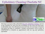 Rug and Upholstery Cleaning Services Charlotte