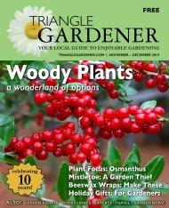 Triangle Gardener-Nov-Dec 2019